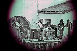 Bueyes Madereros a Sallent (1972).
